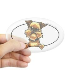 CafePress Brussels Griffon Peeking Bumper Sticker Sticker (Oval) (790346011)