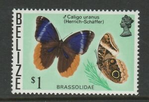 Belize 1974 $1 Butterfly with Crown to right of CA SG 392w Mnh.
