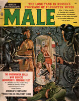 Male Harem of Penal Girls HOMICIDAL NYMPH OF TASHIWARA STREET Frogman Fleet 1960