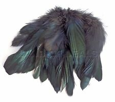 25+ Small Black Rooster tail feathers iridescent black coque feather for crafts