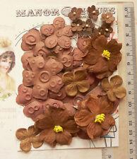 CHOCOLATE BROWN 20 Flowers & Petals - 3 Tones 4 Styles PAPER 15-70mm VA1
