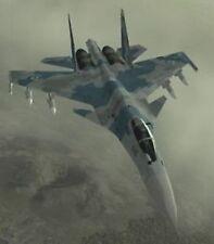 Su-35 Super Flanker Ace Combat 5 Aircraft Wood Model