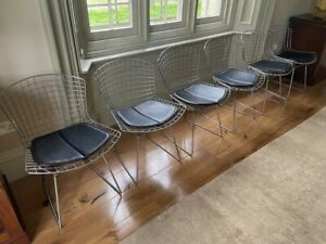 Original 1952 Vintage Harry Bertoia / Knoll Classic Wire Chairs X6