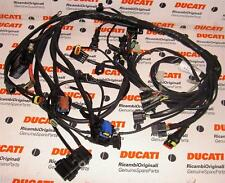 2006 Ducati Monster MS2R Digitek 51014251A main wiring harness,factory brand new