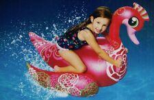 aufblasbarer schöner Schwan Rider /  inflatable swan