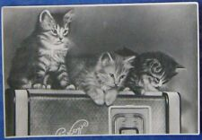 1956 SOVIET POSTCARD kittens listen to radio VERY RARE circulation 20000 an 161a