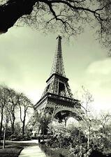 Paris ville tour eiffel poster A2 t