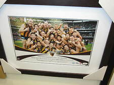 Hawks 2013 Premiers Celebration Photo (Unsigned) Framed.  Official AFL product