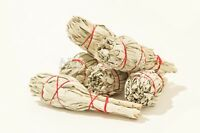 "California Mini White Sage Smudge Incense 3""-4"" Bundle (6 pcs) #JC-5"