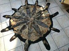 altes Schakal Fell Vorleger Schabrakenschakal Afrika Teppich aus 11 Tieren