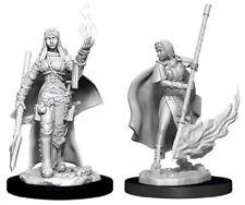 Pathfinder Deep Cuts Unpainted Miniatures: Female Human Oracle (Magic User) NEW