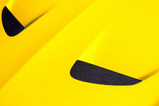 Novitec Carbon Insert for Engine Hood - Ferrari California T