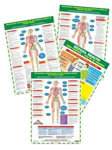 Health Education Posters Anti Smoking Alcohol Drugs Sexual Health Charts