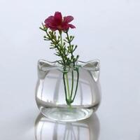Cat Shaped Glass Vase Hydroponic Plant Flower Terrarium Container Pot Decors New
