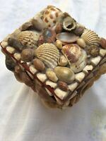 Vintage Seashell Chest Sewing Kit Small Box Filled W Vintage Notions