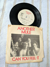 Another Mule 45 EP Can You Feel It Hit a Note DM 2009 Louisville KY Punk Folk PS