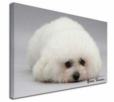 More details for bichon frise dog 'yours forever' x-large 30