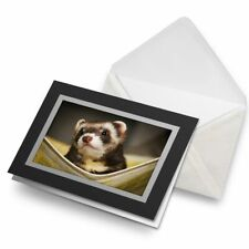 Greetings Card (Black) - Ferret Hammock Pet Rodent Animal Birthday Gift #16329