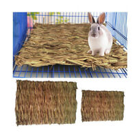 Creative Pet Rabbit Grass Mat Guinea Pig Woven Straw Cage Pad Bedding Chew Toy