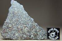 NWA 10303 LL3.5 Primitive Chondrite Meteorite 2.9 gram complete slice