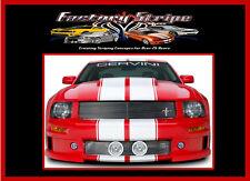 2010 2011 2012 MUSTANG RALLY PINSTRIPE RACING KIT 3m vinyl decal factory stripe