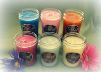 6 Pack, Soy Candles Highly Scented Soy Wax Jelly Jar Candles, You Choose Scents!