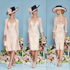 Elegant Chiffon Lace Mère de la robe de mariée Lace Mother Dress Rose All taille
