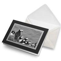Greetings Card (Black) BW - Puffins on Mykines Farow Islands  #37872