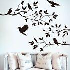Bird Branch Wall Sticker Tree Leaf Decoration Home Living Room Decor Accessories