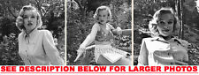 MARILYN MONROE 1950 at24 IN THE WOODS 3x4x6 PHOTOS