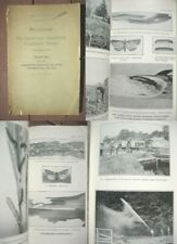 1919 Connecticut Entomologist Report-Insect Pests-Bee Hives,Aphids,Moths,Weevil s