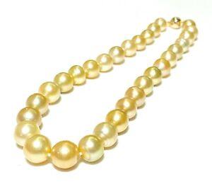 "Gorgeous 11.5-14mm 30 pcs. Natural Gold Australia South Sea Pearl 17.5"" Necklace"