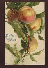 Artist C Klein PEACHES Birthday Greetings Tuck Art #6118 PPC 1907