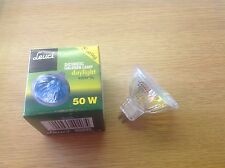 10 X 12v 50w MR16 HALOGEN LAMP BULB 4200K EXN 38 deg