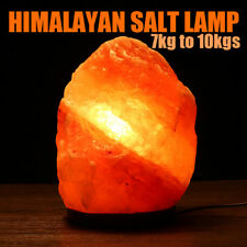 Himalayan Natural Crystal Salt Lamp Dimmer Air Purifier Light Wooden Base 110V