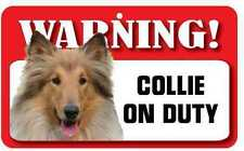 Collie Sign - Laminated Card -  Beware Of Dog 20cm x 12cm