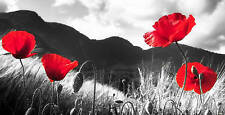 """X LARGE RED GREY FLORAL CANVAS PICTURE POPPYS   40""""x20"""""""