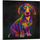 ARTCANVAS Dachshund Colorful Animal Dog Canvas Art Print