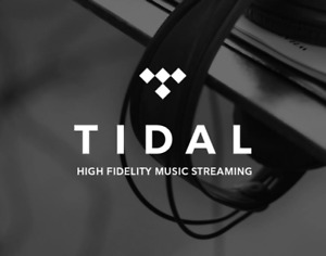 12 Monate Tidal Premium - Voller Kontozugriff - Digitaler Mail Versand