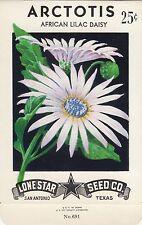 Vintage  seed packets -25¢ Arctotis-----144