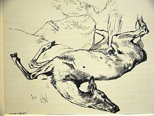 Edwin Landseer DEAD DEER STAG BULLETS iN CHEST 1870 Antique Art Print Matted