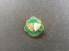 1964 AOF Ancient Order of Foresters Rothesay High Court Enamel Badge Pin 1960s