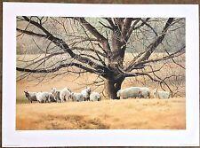 "Don Patterson ""The Meadow"" S/N Ltd Ed Print #126/600"