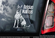 Belgian Malinois - Car Window Sticker - Dog Sign -V15