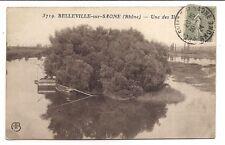 belleville-sur-saone , une des iles