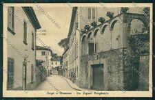 Lucca Borgo a Mozzano cartolina QQ2611