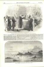 1856 la lettura PEERAGE brevetto House LORDS Amelia distrutto HERMITAGE ROCCE JERSEY