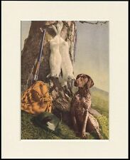 GERMAN SHORTHAIRED POINTER WITH GAME AND GUN DOG PRINT MOUNTED READY TO FRAME