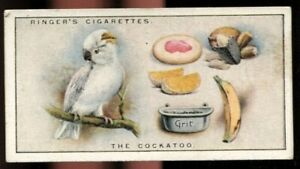 Tobacco Card, Edwards Ringer Bigg, OUR PETS, 1926, 2nd Series, Cockatoo, #4