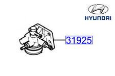 Genuine Hyundai Trajet Fuel Filter Body - 319253A800
